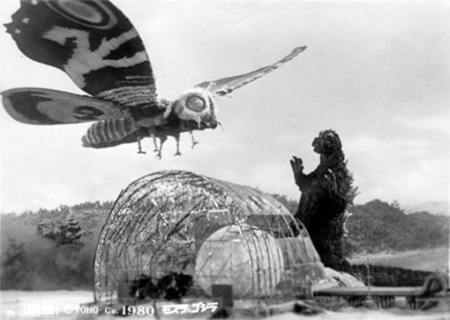 Mothra vs Godzilla - Image 2