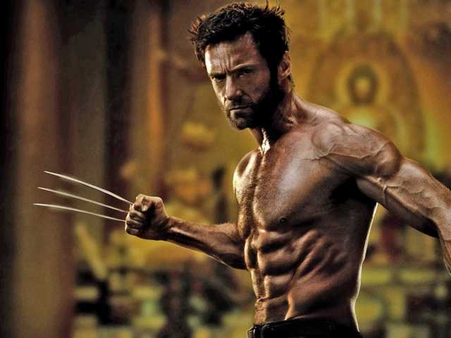 The Wolverine - Image 1