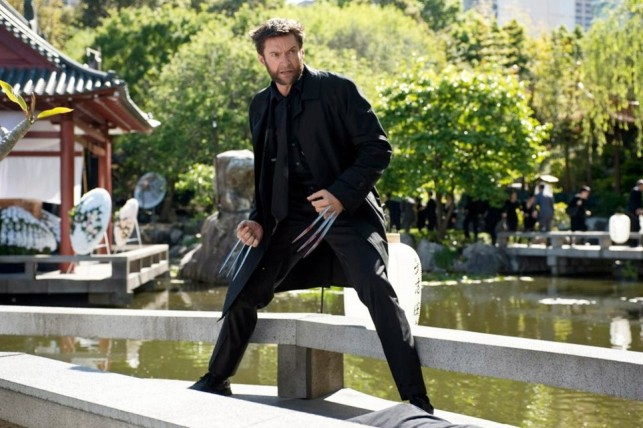 The Wolverine - Image 2
