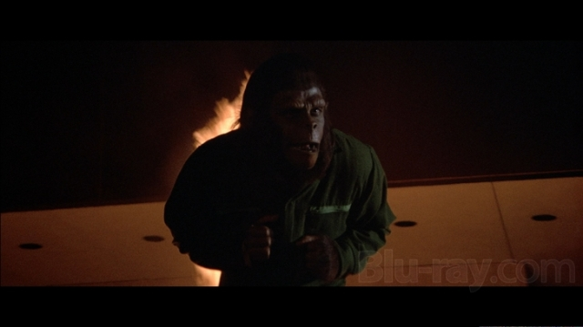 Conquest of the Planet of the Apes - screenshot 9