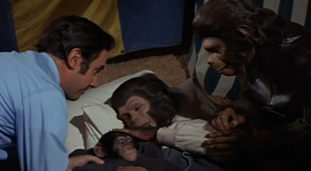 Escape fom the Planet of the Apes - screenshot 6