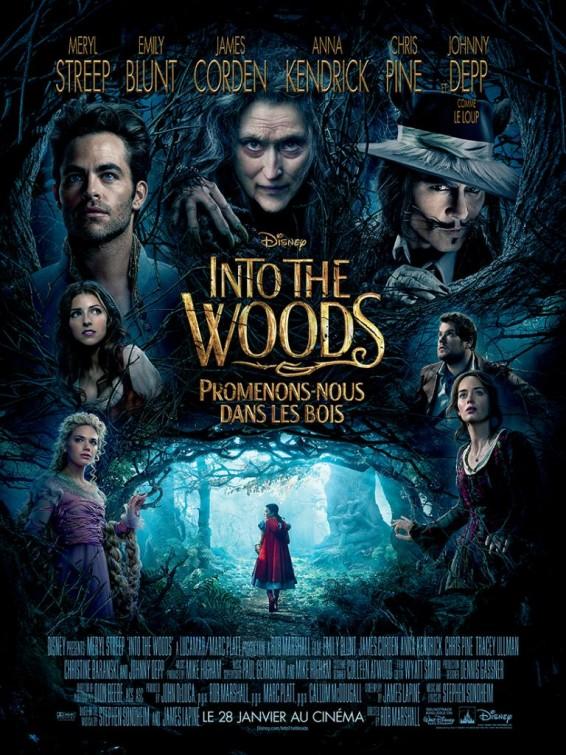 Caminhos da Floresta - Poster 12