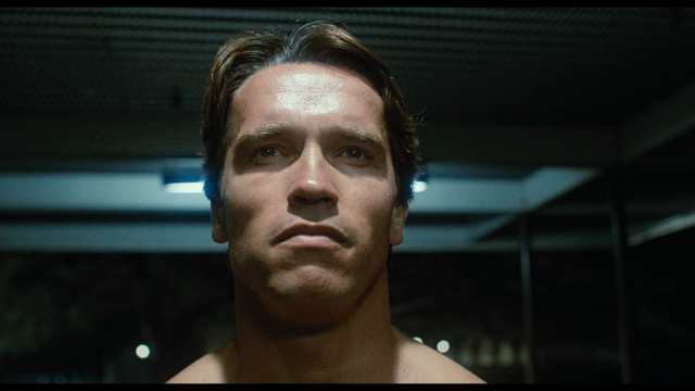 The Terminator - screenshot 1