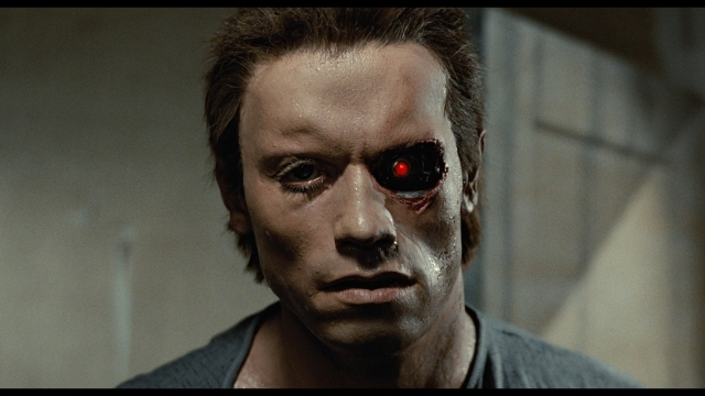 The Terminator - screenshot 11